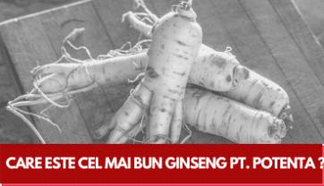 Care este cel mai bun Ginseng pentru Potență ?